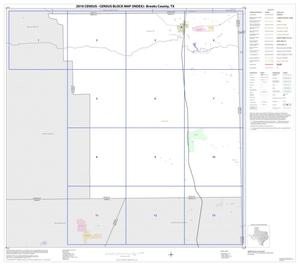Primary view of object titled '2010 Census County Block Map: Brooks County, Index'.