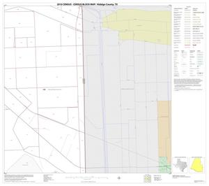 Primary view of object titled '2010 Census County Block Map: Hidalgo County, Block 81'.