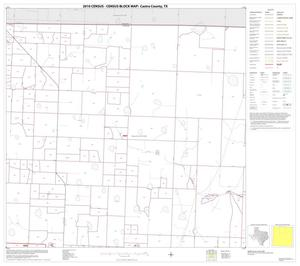 Primary view of object titled '2010 Census County Block Map: Castro County, Block 2'.