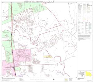 Primary view of object titled '2010 Census County Block Map: Montgomery County, Block 30'.