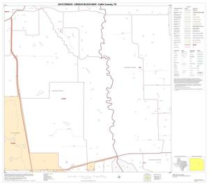 Primary view of object titled '2010 Census County Block Map: Collin County, Block 46'.