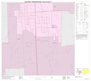 Primary view of object titled '2010 Census County Block Map: Johnson County, Inset E02'.