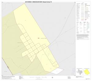 Primary view of object titled '2010 Census County Block Map: Bosque County, Inset I01'.