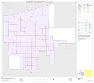 Primary view of object titled '2010 Census County Block Map: Hale County, Inset E01'.