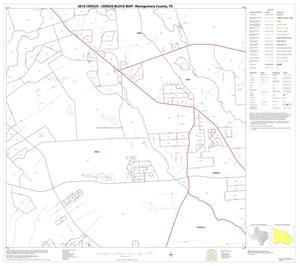 Primary view of object titled '2010 Census County Block Map: Montgomery County, Block 31'.