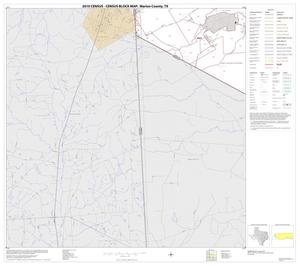 Primary view of object titled '2010 Census County Block Map: Marion County, Block 7'.