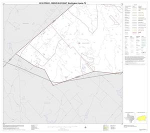 Primary view of object titled '2010 Census County Block Map: Washington County, Block 21'.