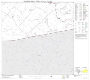 Primary view of object titled '2010 Census County Block Map: Washington County, Block 31'.