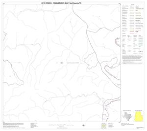 Primary view of object titled '2010 Census County Block Map: Real County, Block 19'.