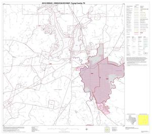Primary view of object titled '2010 Census County Block Map: Young County, Block 11'.