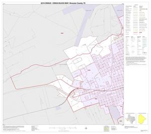 Primary view of object titled '2010 Census County Block Map: Brewster County, Inset A01'.