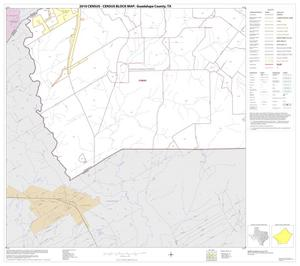 Primary view of object titled '2010 Census County Block Map: Guadalupe County, Block 19'.