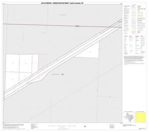 Primary view of object titled '2010 Census County Block Map: Castro County, Inset A01'.