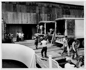 Primary view of object titled '[Unloading Bananas - Port of Orange]'.
