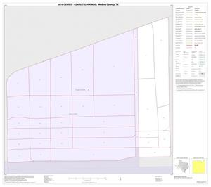Primary view of object titled '2010 Census County Block Map: Medina County, Inset C01'.