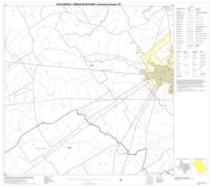Primary view of object titled '2010 Census County Block Map: Limestone County, Block 13'.