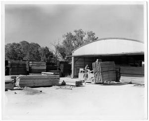 Primary view of object titled '[Stacking Lumber at a Lumber Yard]'.