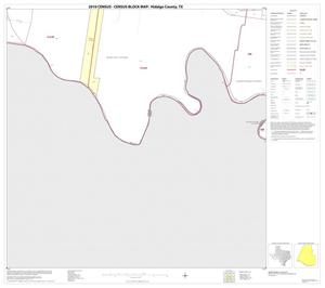 Primary view of object titled '2010 Census County Block Map: Hidalgo County, Block 113'.