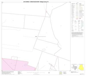Primary view of object titled '2010 Census County Block Map: Hidalgo County, Block 19'.