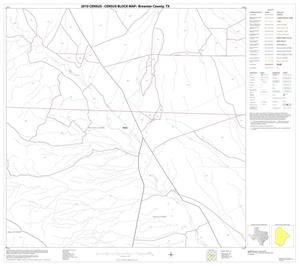 Primary view of object titled '2010 Census County Block Map: Brewster County, Block 58'.
