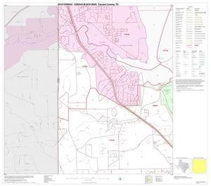 Primary view of object titled '2010 Census County Block Map: Tarrant County, Block 17'.