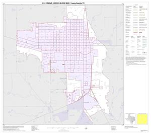 Primary view of object titled '2010 Census County Block Map: Young County, Inset A01'.