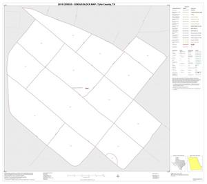 Primary view of object titled '2010 Census County Block Map: Tyler County, Inset C01'.