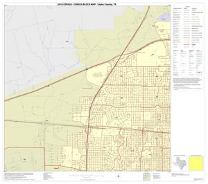 Primary view of object titled '2010 Census County Block Map: Taylor County, Inset E01'.