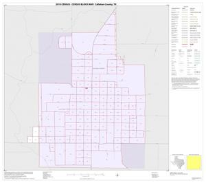 Primary view of object titled '2010 Census County Block Map: Callahan County, Inset E01'.