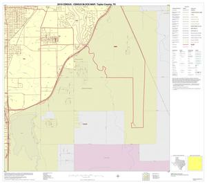 Primary view of object titled '2010 Census County Block Map: Taylor County, Inset E04'.