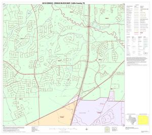 Primary view of object titled '2010 Census County Block Map: Collin County, Block 53'.