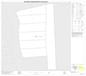 Primary view of object titled '2010 Census County Block Map: Camp County, Inset B01'.