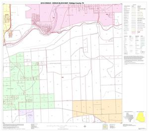 Primary view of object titled '2010 Census County Block Map: Hidalgo County, Block 110'.