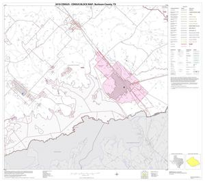 Primary view of object titled '2010 Census County Block Map: Burleson County, Block 18'.