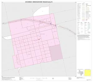 Primary view of object titled '2010 Census County Block Map: Mitchell County, Inset C01'.