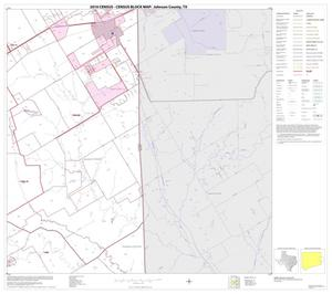 Primary view of object titled '2010 Census County Block Map: Johnson County, Block 10'.