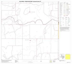 Primary view of object titled '2010 Census County Block Map: Lipscomb County, Block 10'.
