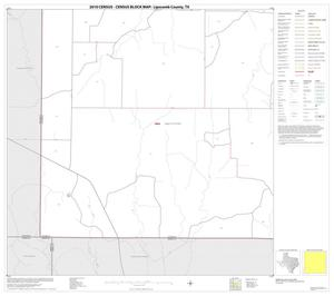 Primary view of object titled '2010 Census County Block Map: Lipscomb County, Block 13'.