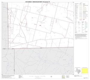 Primary view of object titled '2010 Census County Block Map: Frio County, Block 13'.