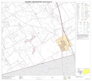Primary view of object titled '2010 Census County Block Map: Johnson County, Block 14'.