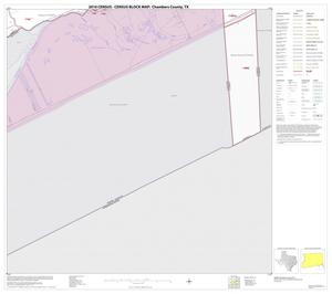 Primary view of object titled '2010 Census County Block Map: Chambers County, Block 19'.