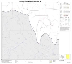 Primary view of object titled '2010 Census County Block Map: Coleman County, Block 22'.