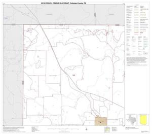 Primary view of object titled '2010 Census County Block Map: Coleman County, Block 1'.