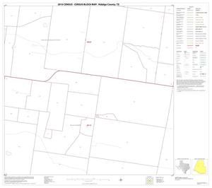 Primary view of object titled '2010 Census County Block Map: Hidalgo County, Block 40'.