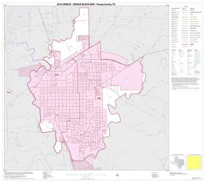 Primary view of object titled '2010 Census County Block Map: Young County, Inset C01'.