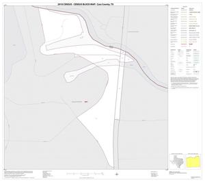 Primary view of object titled '2010 Census County Block Map: Cass County, Inset A01'.