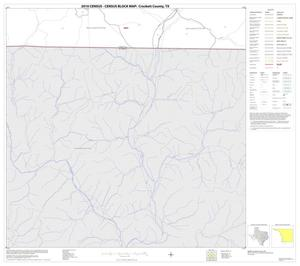 Primary view of object titled '2010 Census County Block Map: Crockett County, Block 31'.