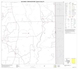 Primary view of object titled '2010 Census County Block Map: Coleman County, Block 20'.