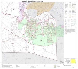 Primary view of object titled '2010 Census County Block Map: Llano County, Block 20'.