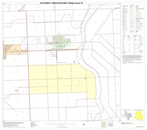Primary view of object titled '2010 Census County Block Map: Hidalgo County, Block 80'.